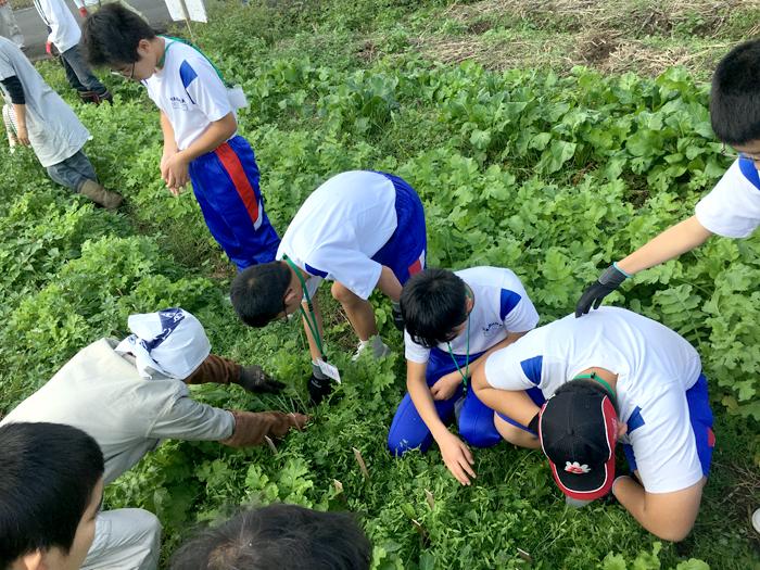 勝間田塾 20161029_収穫体験_06